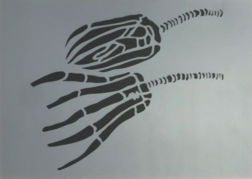 2 Seelilien A4 21x29,7 cm